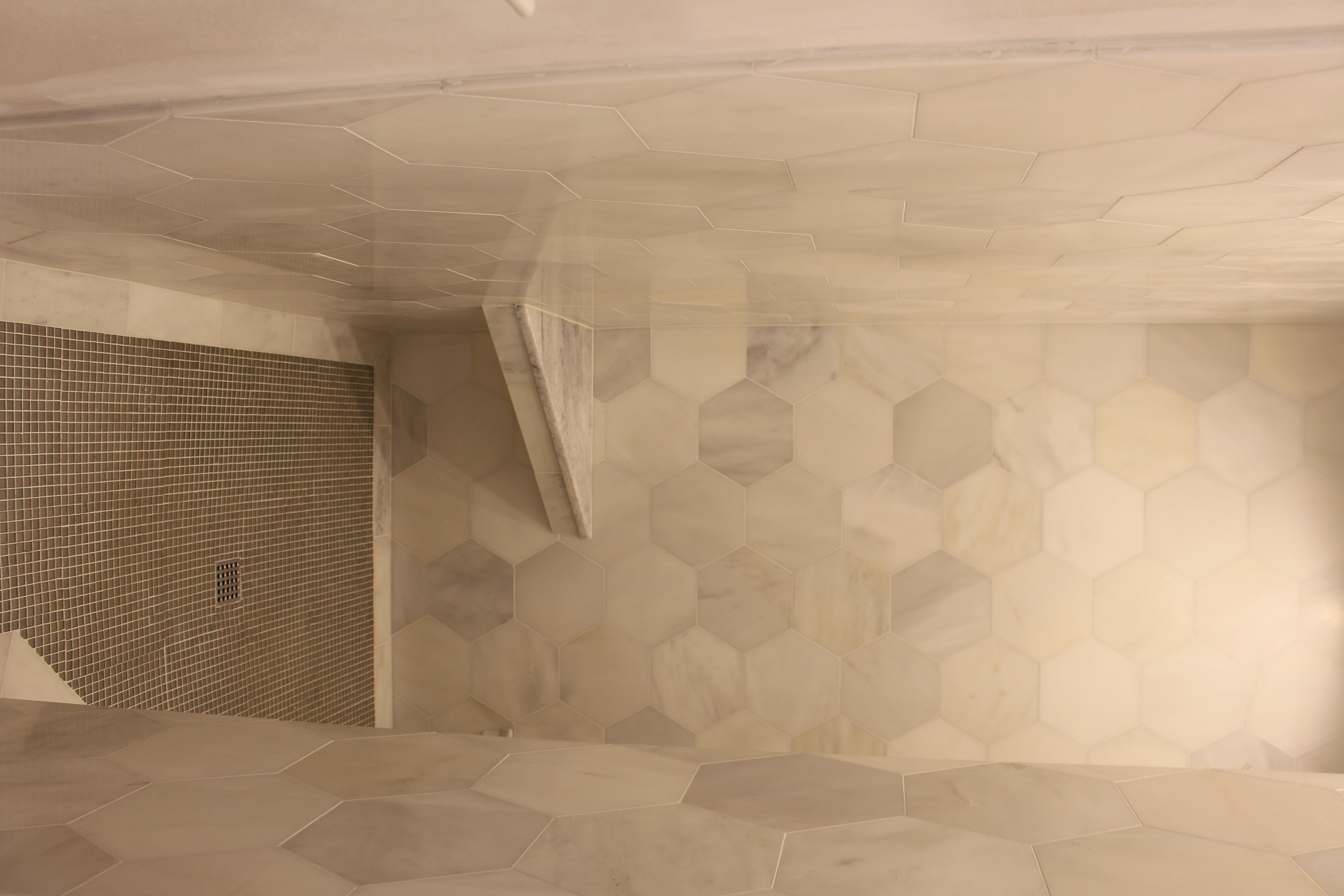 Lot 265 AR master shower