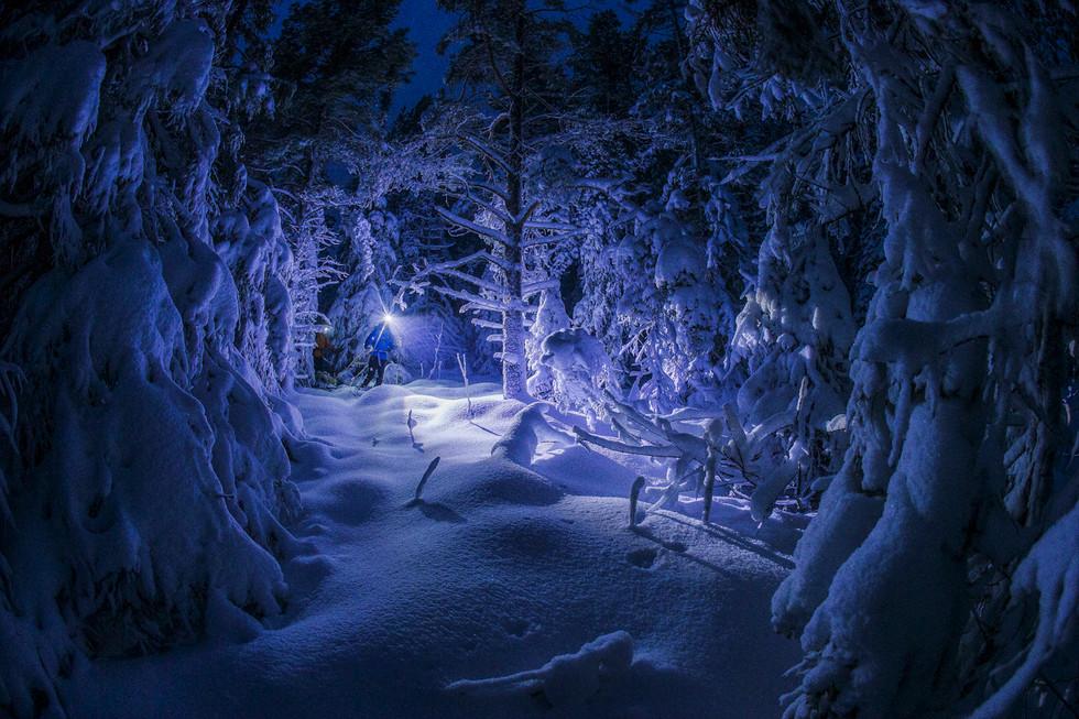 Snowrackets in Norrland Sweden