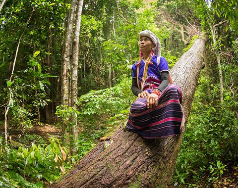 National Park Doi Ithanon