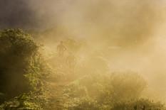 Trailrunning Transgrancanaria