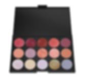 Make-up Case Open-Metallic Eyeshadow.png