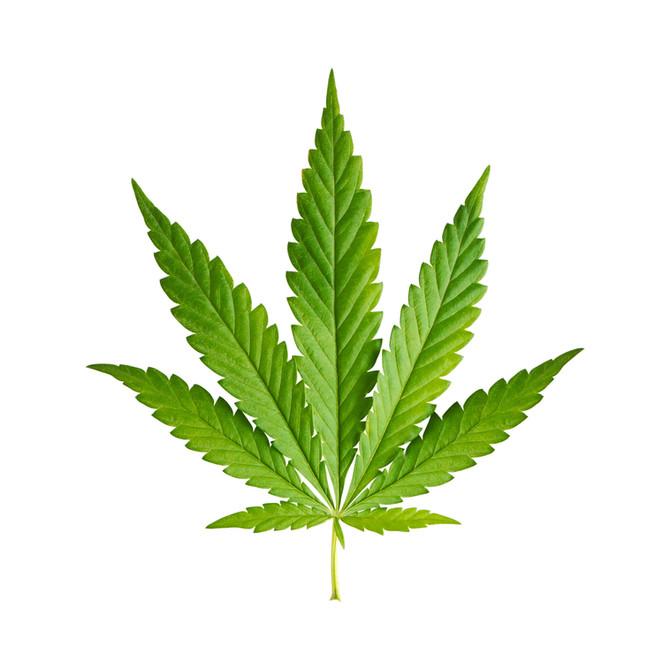 Medical Marijuana Dispensaries in Pennsylvania Open Tomorrow