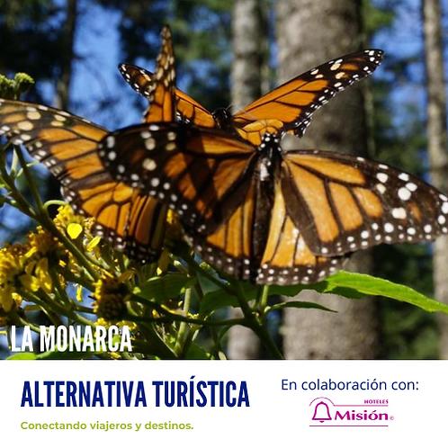 La Monarca desde Morelia