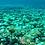 Thumbnail: Visita las Bahías de HUATULCO