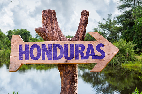 Organic Honduran Fair Trade