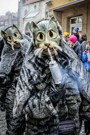 Rauchende Katzen