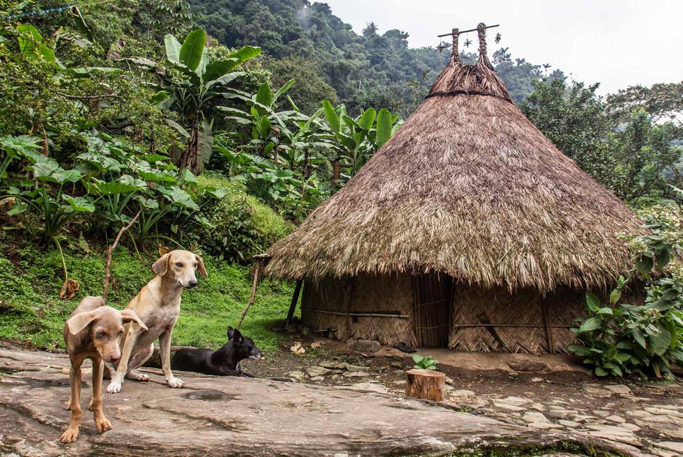 Tairona Hütte