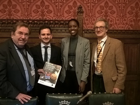 Polygeia at the House of Commons: Lessons from Ebola Affected Communities