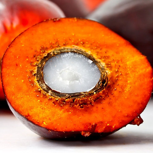 Olio di Nocciolo di Palma Bio RSPO  4.5 Kg