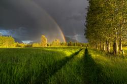 Rainbow Road - Nakusp, BC