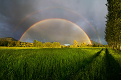 Complete Double Rainbow - Nakusp, BC
