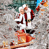SantaMrsFrozenTrees_edited.jpg