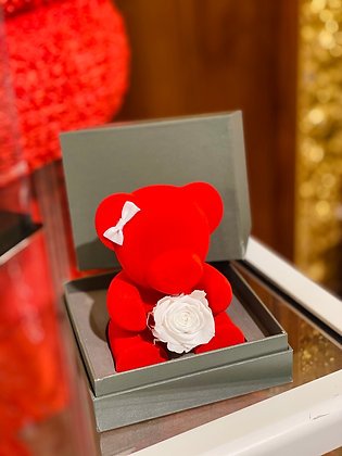 Small Red Bear with White Preserved Rose