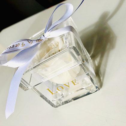 1 Acrylic Box - White - Custom Ribbon