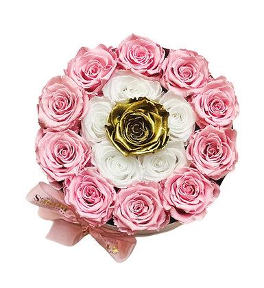 Gold Eye - Pink / White in Grande White Box