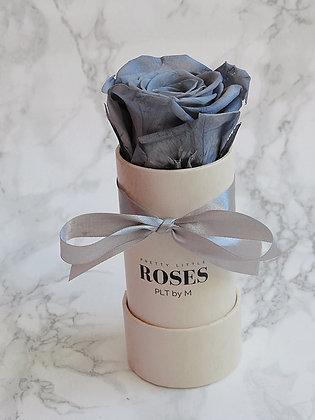 The Grey Rose in Beige Box