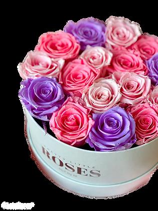 Weiße runde Blumenkiste - Mischen Sie Rosa / Lila
