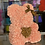 Thumbnail: GOLDEN EDITION - Salmon pink with Gold Heart