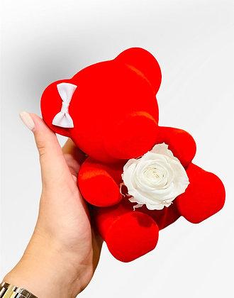Kleiner roter Bär mit weißer konservierter Rose