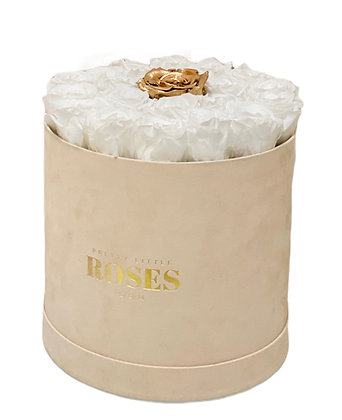 Large Beige Velvet FlowerBox - Choose Color Roses