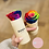 Thumbnail: The Solo Box - Beige - Choose Color Rose