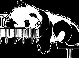 Trashed Panda image.png