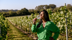 Independent English Wine Awards 2021: Sussex's wine industry is 'grape'!