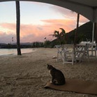 sunset at Nanny Cay Tortola