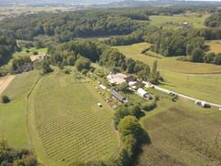 Wir ihr seht, liegt unser Hof  inmitten idyllischer Uhudlerweingärten und Streuobstwiesen...