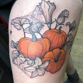 Pumpkin Patch.jpeg