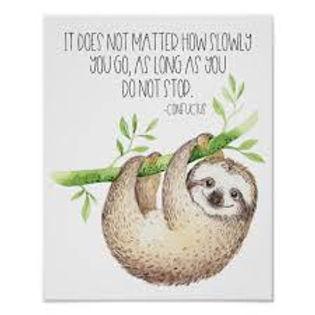 sloth slow pic.jfif