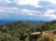 ruta observación lince ibérico Andújar