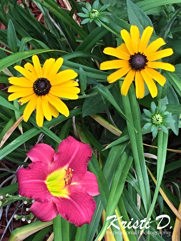 Flower #06