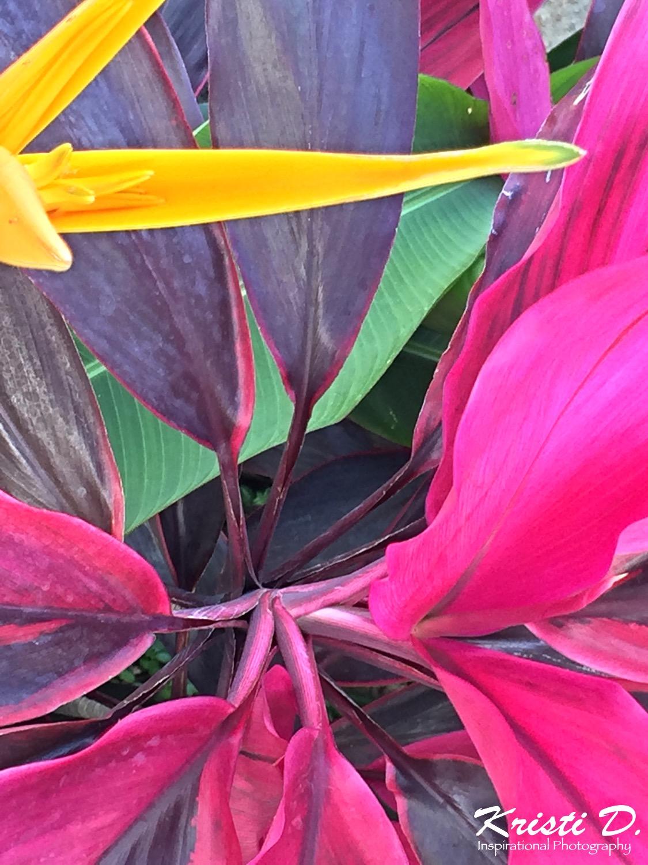 Flower #010