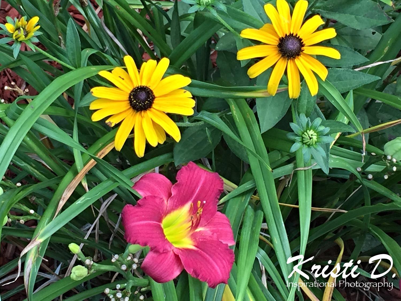 Flower #05