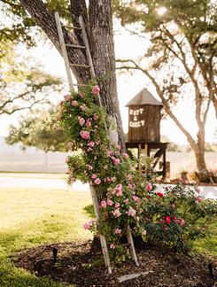 BrownWedding-Reception-KelcyLeighPhotography-70.jpg