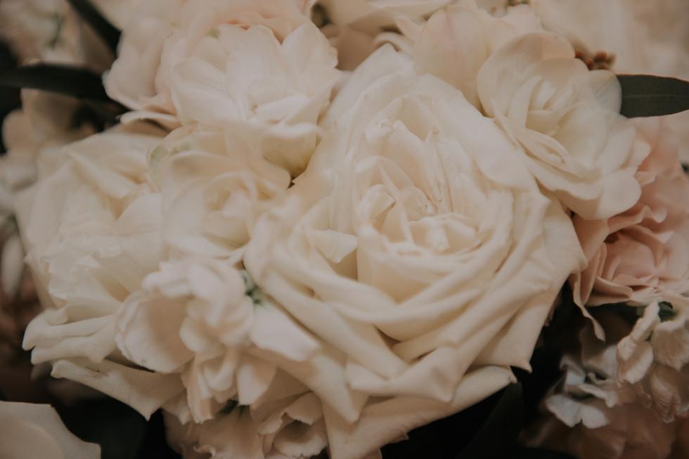 Photo Feb 23, 2 50 04 PM.jpg