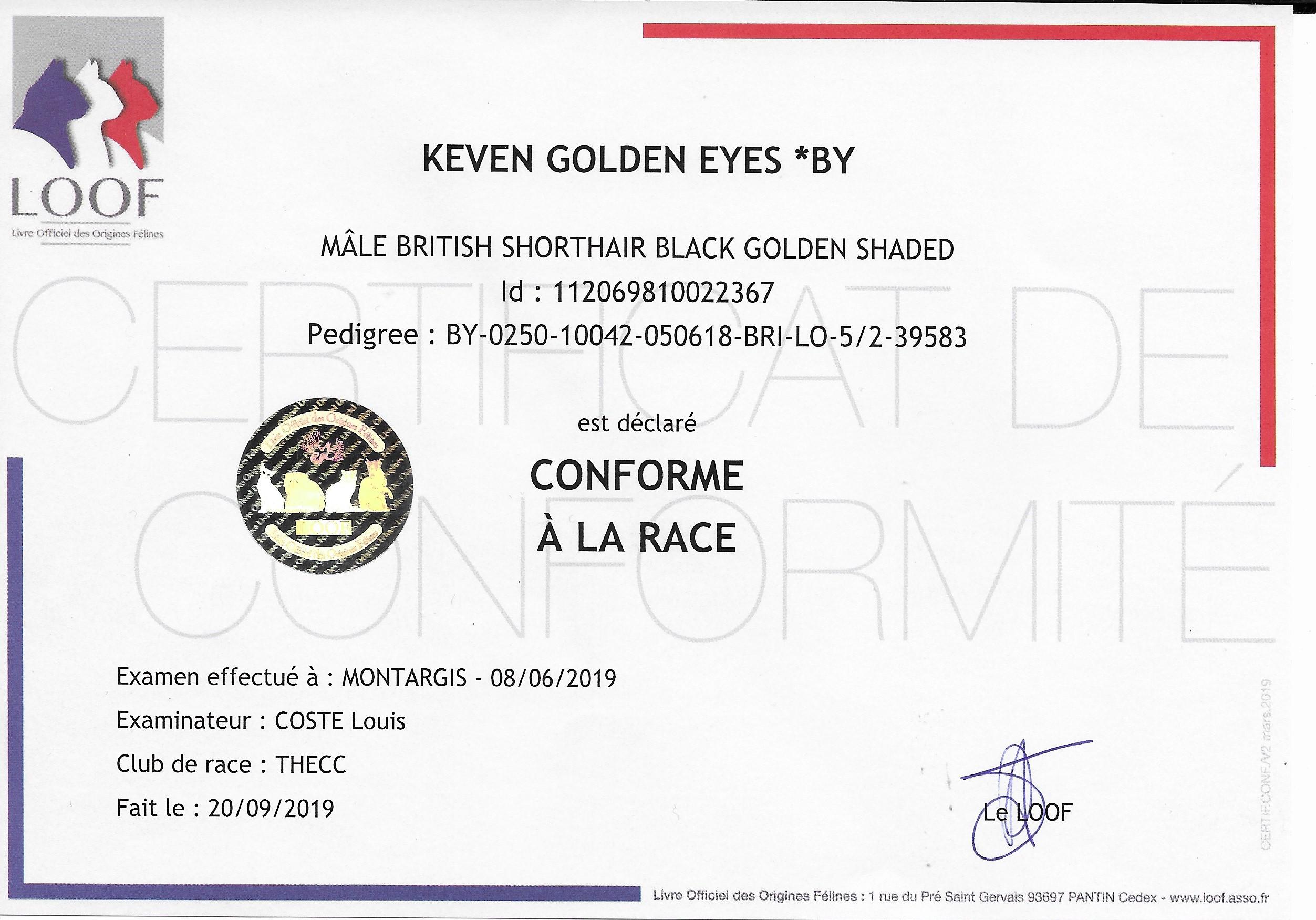 conformité_à_la_race_keven
