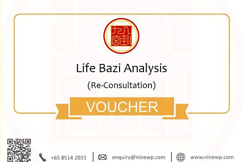 Life Bazi Analysis (Re-Consultation)