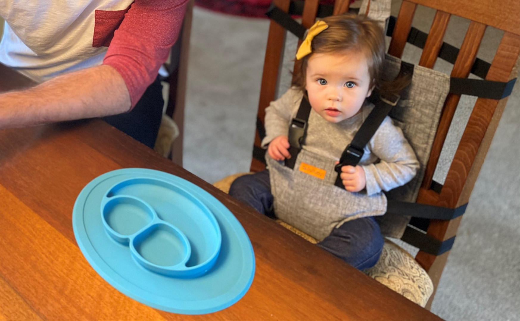 On-The-Go Harness Seat