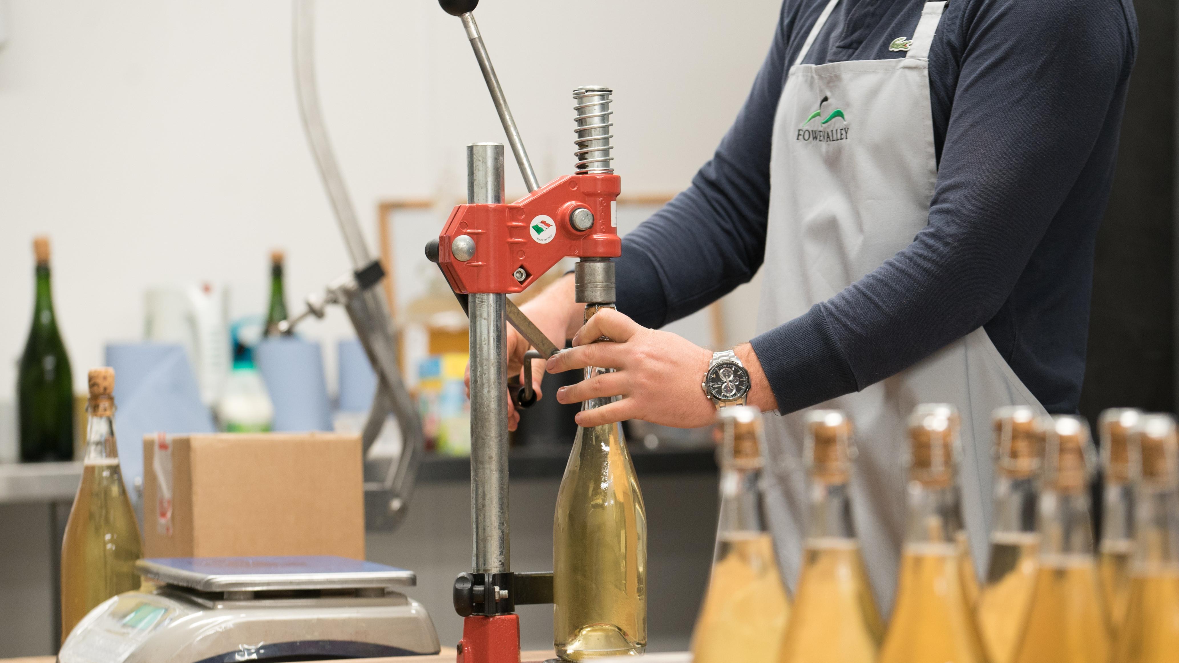 Basic Cider Making Class