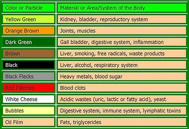 detox chart.jpg