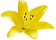 pngtree-hand-drawn-yellow-lily-flower-el