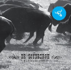 Dr Zoydbergh - Handmade Songs
