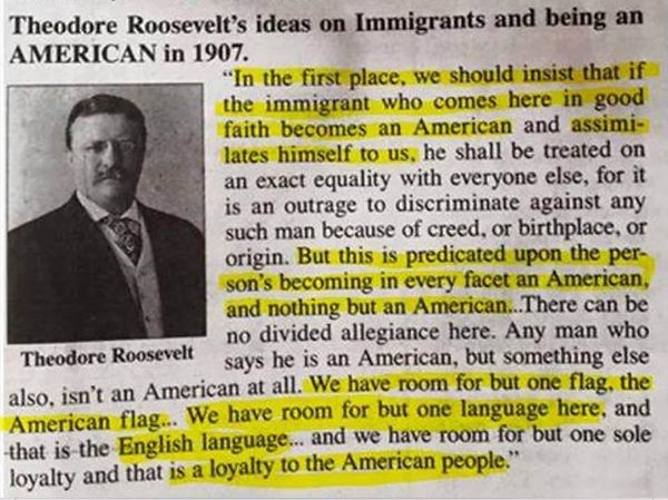 Teddy-Roosevelt-Being-an-American-croppe