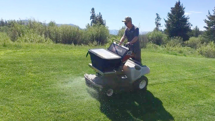 Feed and Protect Your Lawn with Our One Step Fertilizer/Herbicide Service