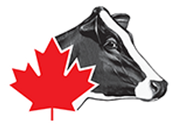 Holstein Canada