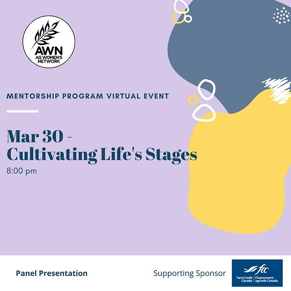 Mentorship Program Life Stages.png