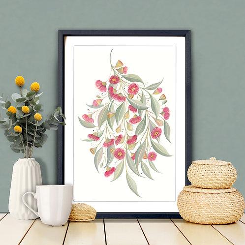 Gum Blossoms Art Print