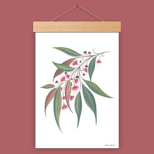 Gum Leaves Art Print